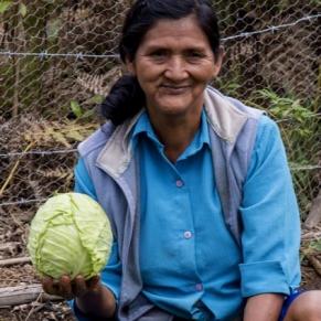 Comunidad Chirimayo